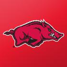 Arkansas Univ
