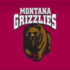 Montana Univ