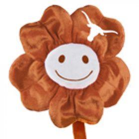 Texas Happy Flower (20