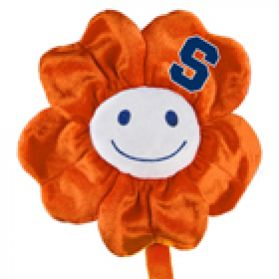 Syracuse Happy Flower  (20