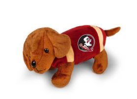 FSU Football Dog