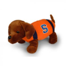 Syracuse Football Dog
