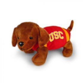 USC Football Dog