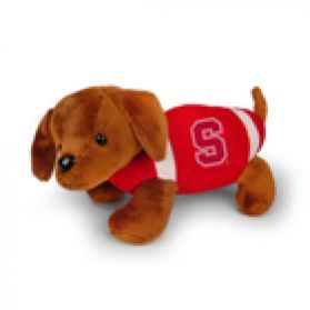 Stanford Football Dog