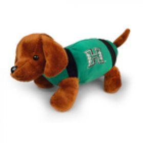 Hawaii Football Dog