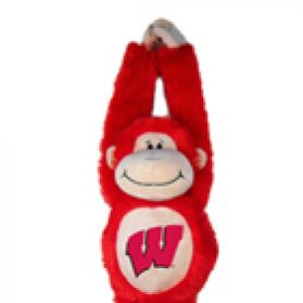Wisconsin Velcro Monkey