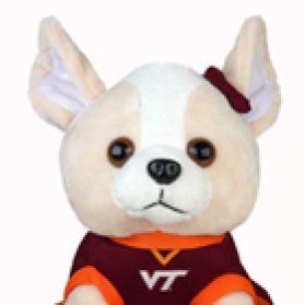 Virginia Tech Cheerhuahua