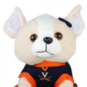 Virginia Cheerhuahua