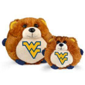 West Virginia College Cub
