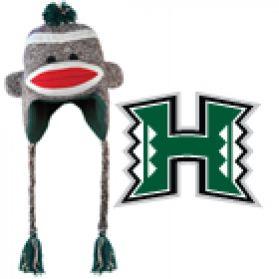 Hawaii Sock Monkey - Hat