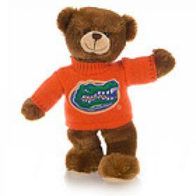 Florida Sweater Bear