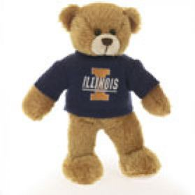 Illinois Sweater Bear