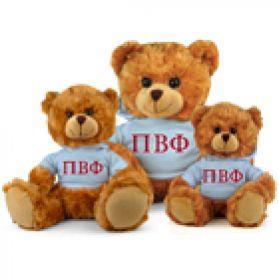 Pi Beta Phi Hoodie Bear