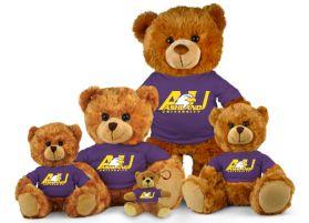 Ashland Jersey Bear