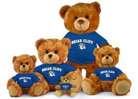 Briar Cliff Jersey Bear