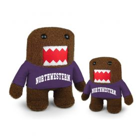 Northwestern Domo