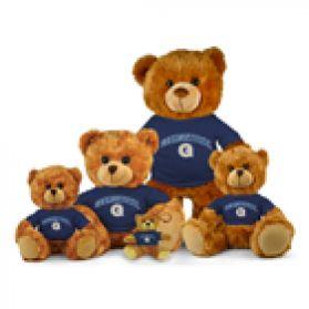 Georgetown Jersey Bear