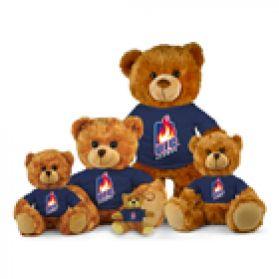 Illinois Chicago Jersey Bear