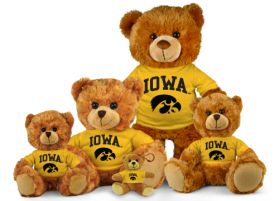 Iowa Jersey Bear