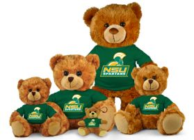 Norfolk State Jersey Bear