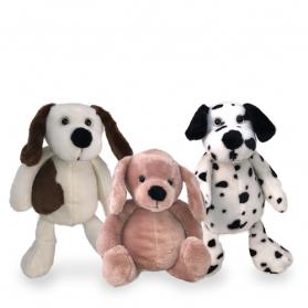 Puppy Assortment