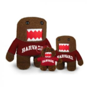 Harvard Domo