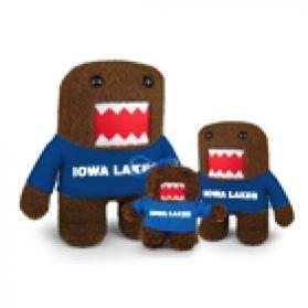 Iowa Lakes Domo
