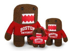 Boston University Domo