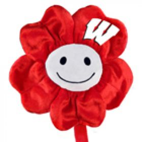 Wisconsin Happy Flower  (20