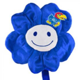 Kansas Happy Flower  (20