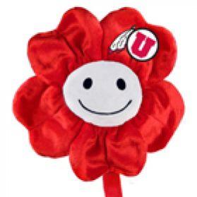 Utah Happy Flower  (20