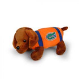 Florida Football Dog