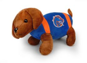 Boise State Football Dog