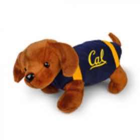 Cal Football Dog