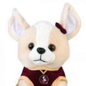 FSU Cheerhuahua W/Song