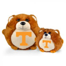 Tennessee College Cub
