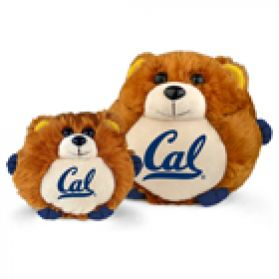 Cal Berkeley College Cub