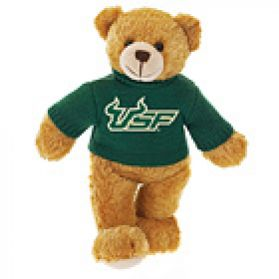 South Florida Sweater Bear