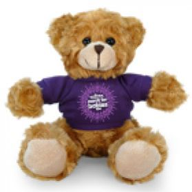 March For Babies Bear 2016