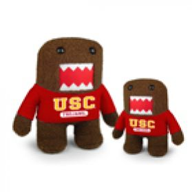 USC Domo