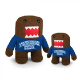 Tennessee State Domo