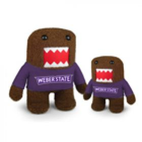 Weber State Domo