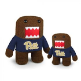Pittsburgh Domo