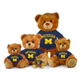 Michigan Jersey Bear