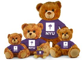 New York Jersey Bear