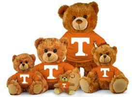 Tennessee Jersey Bear