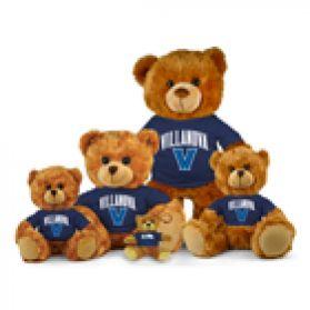 Villanova Jersey Bear