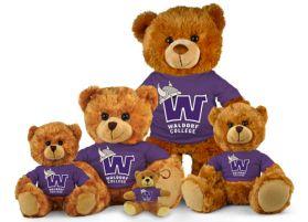Waldorf College Jersey Bear