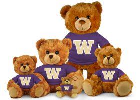 Washington Jersey Bear