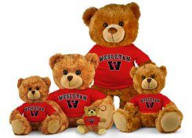 Wesleyan Jersey Bear
